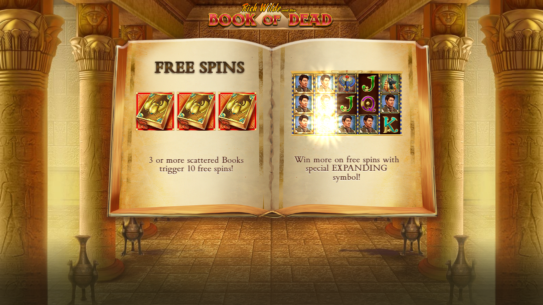 Book Of Dead gameplay